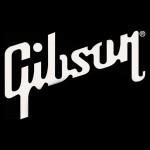 La crisi di Gibson: rischia la bancarotta.