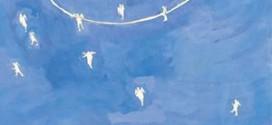 """Questo mercoledì la presentazione di """"Fair Play"""" di Claudio Pallottini alla Società Dante Alighieri"""